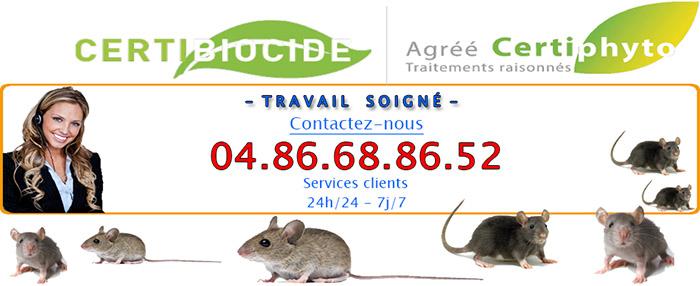 Deratisation Châteauneuf les Martigues 13220